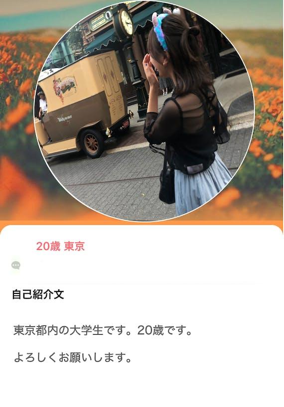 with だめなプロフィールa